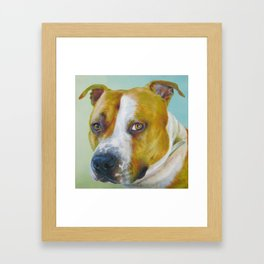 DOG III Framed Art Print