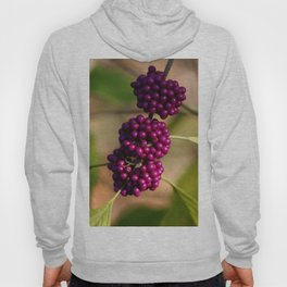 French Mulberry Hoody