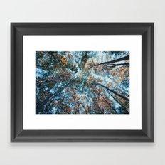 look up 02 Framed Art Print