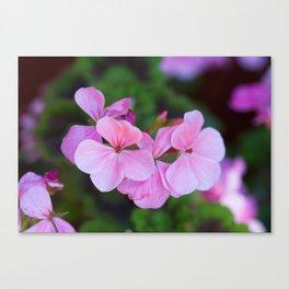 Bloom Through Change Canvas Print