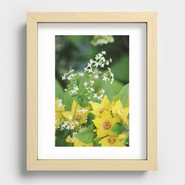 Yellow and white flowers Recessed Framed Print