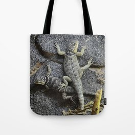Desert lizards.... Tote Bag
