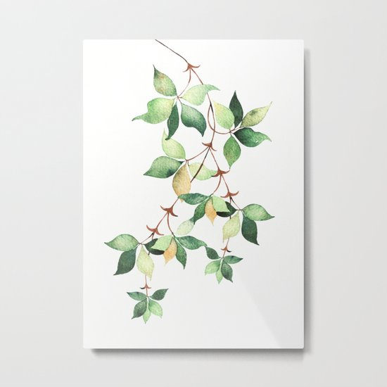 Tree Branch Metal Print