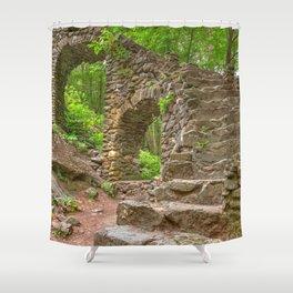 Forest Castle Ruins Shower Curtain