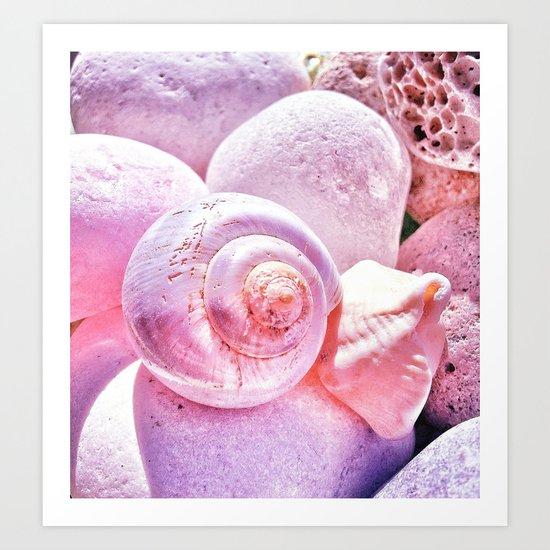 Shells and Stones Art Print