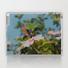 Soft Pink Hibiscus Laptop & iPad Skin