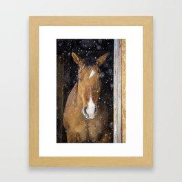 Cowboy in Stall Framed Art Print