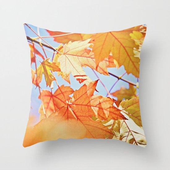 Fall Color Throw Pillow