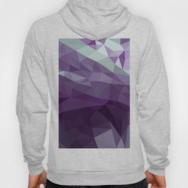 Purple Vectors Hoody