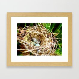 Birds :: Our Nest Framed Art Print