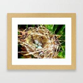 Birds :: Our Nest Framed Art Print