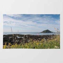 Wild Flowers and Island Rug
