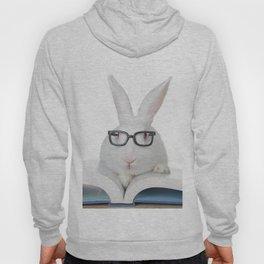 Storytime Bunny Hoody