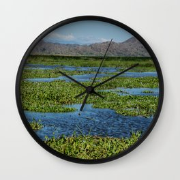 Palo Verde Collectios Wall Clock