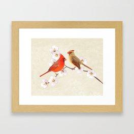 Northern Cardinal Bird Couple Framed Art Print