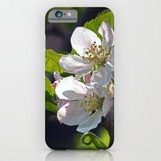 Apple Blossom iPhone 6s Slim Case