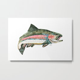 Rainbow Trout Collage Metal Print