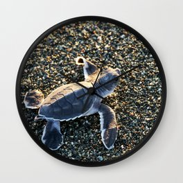 Green Turtle Hatchling Wall Clock