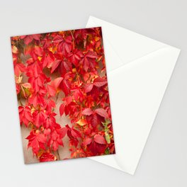 Vitaceae ivy wall abstract Stationery Cards