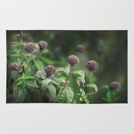 The Grey Allium Garden Rug
