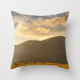 Sheep grazing in the Lake District, England Throw Pillow