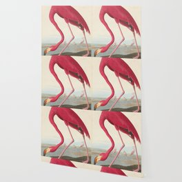 Vintage Flamingo Illustration (1838) Wallpaper