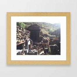 Ghost Town Donkey Framed Art Print