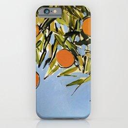 Orange Grove (Blue) iPhone Case