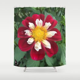 Mary Evelyn Dahlia Shower Curtain