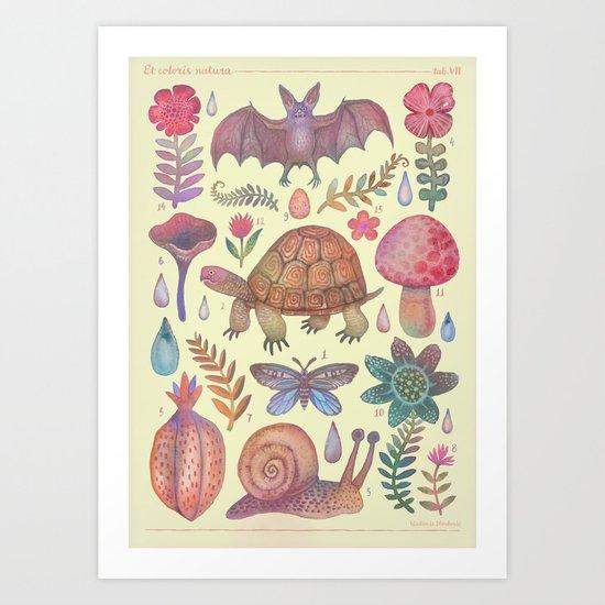 Et coloris natura VII Art Print