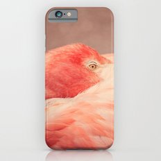 The Resting Flamingo iPhone 6s Slim Case