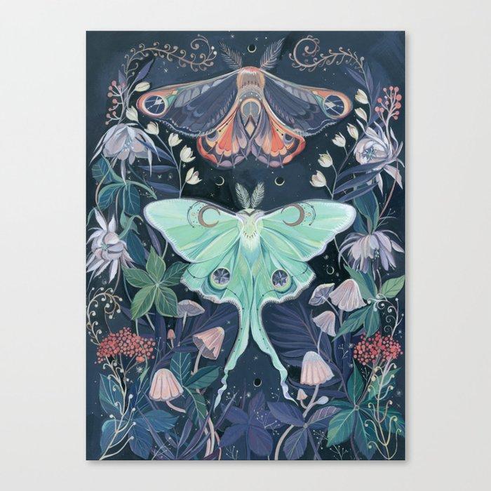Luna Moth Leinwanddruck