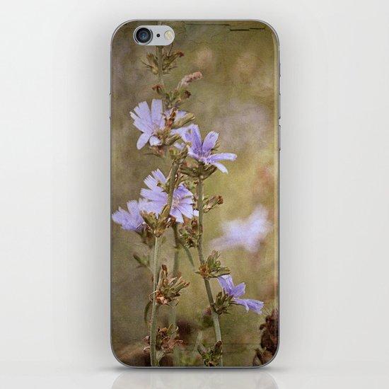 Fields of Summer's Splendor iPhone & iPod Skin