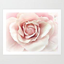 Pastel Pink Rose Art Print