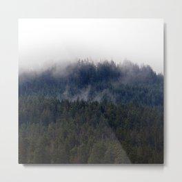 Misty Pine Trees Pacific Northwest Metal Print