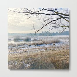 Cold winter morning over the frozen sand moor Metal Print
