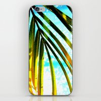 palm tree iPhone & iPod Skins featuring Palm by Stephanie Stonato
