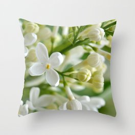 Spring 041 Throw Pillow
