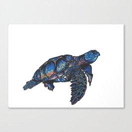 Turtle Art Print  Canvas Print