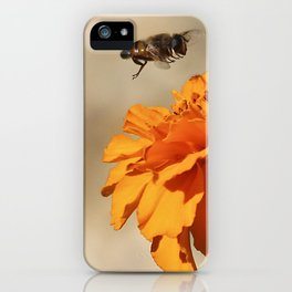 Coming in to land iPhone Case