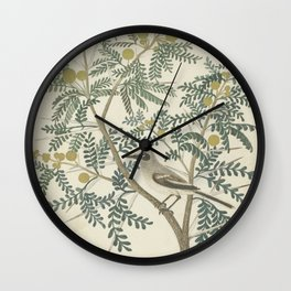 Robert Jacob Gordon - Acacia karroo Hayne or Vachellia karroo - 1777-1786 Wall Clock