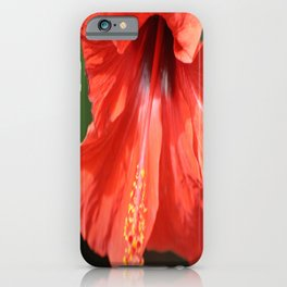 Red Petal and Anther with Pistil of Hibiscus Flower iPhone Case