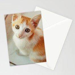 Tuku Stationery Cards