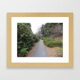 The Path Less Taken Framed Art Print