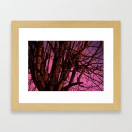 Spooky Trees - Pink  Framed Art Print