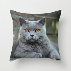Diesel the cat ! Throw Pillow