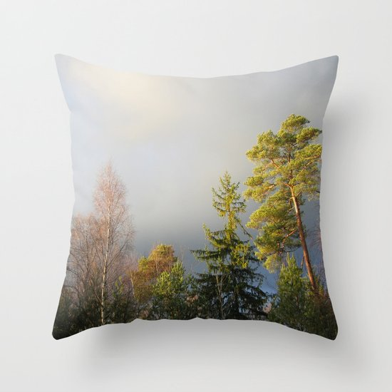 Storm Warning Throw Pillow