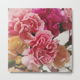 Soft Pink Carnations Metal Print