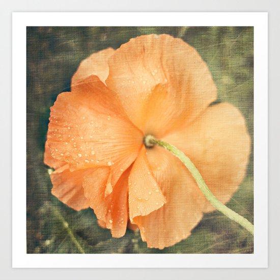 Orange you happy Art Print