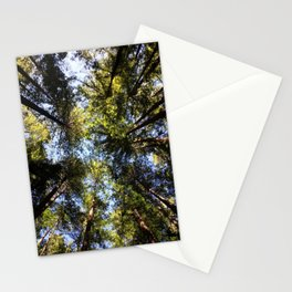 Redwood Canopy Stationery Cards